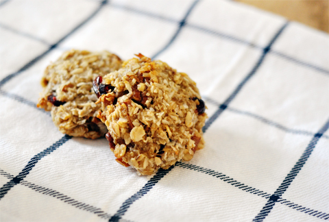 cranberry-breakfast-cookies-2