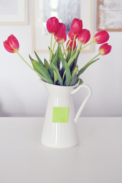 lark-linen_tulip-surprise