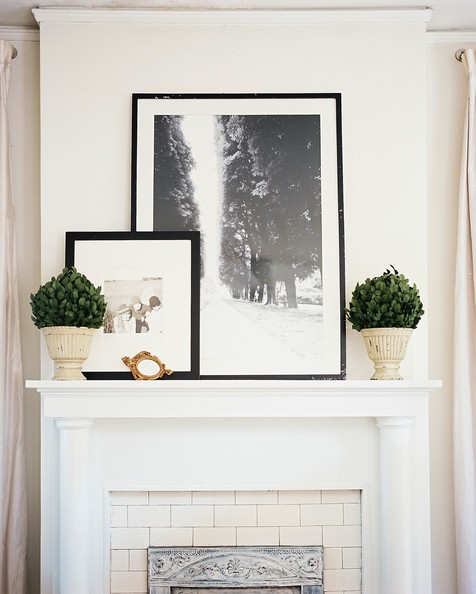 Lisa+Sherry+pair+boxwoods+framed+black+white+74iiPyeyw4dl