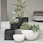 Black and white pots